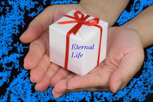 The free gift of eternal life god couldnt be any planer in his word eternal life is a free gift from god a gift means something acquired without compensation that is negle Gallery