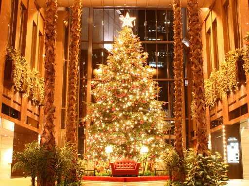 Jesus Christmas Pic.O Christmas Tree Idolatry